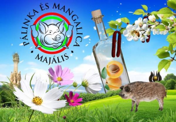 Pálinka-és Mangalicamajális