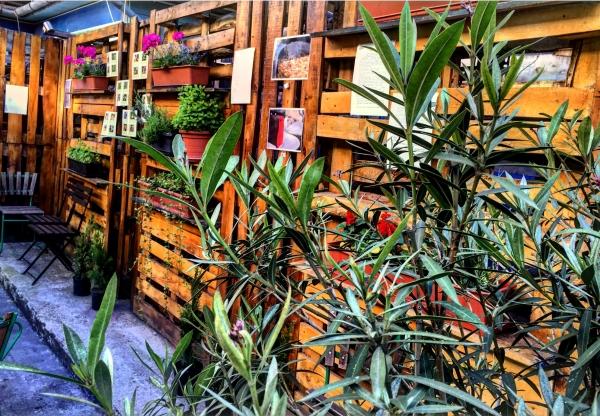 Végre nyit a Vegan Garden Budapesten!
