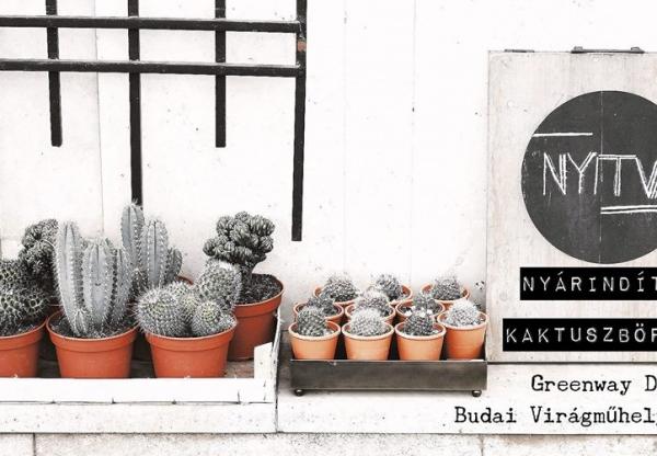 Nyárindító Kaktuszbörze a Budai Virágműhelyben