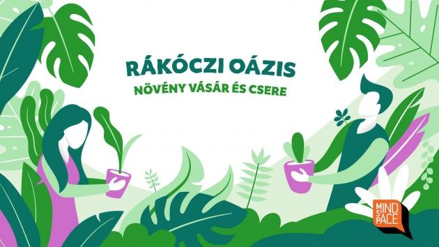 Rákóczi oázis: növényvásár, -csere, -örökbefogadás október 6-án