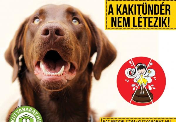 Kutyabarát – El kell mondanunk valamit:  a Kakitündér nem létezik!  Szedd össze Te is!