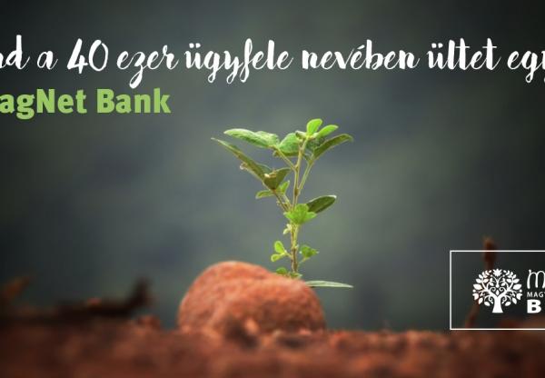 Mind a 40 ezer ügyfele nevében ültet egy fát  a MagNet Bank