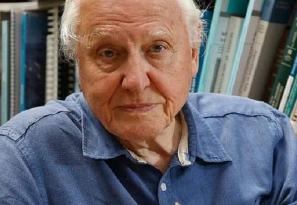 Karanténoktatás: David Attenborough földrajzot fog tanítani az iskolásoknak