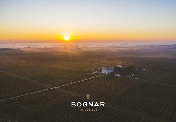 Magyar sikerek a berlini borversenyen!