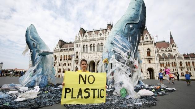 Óriási sikert ért el a Greenpeace!