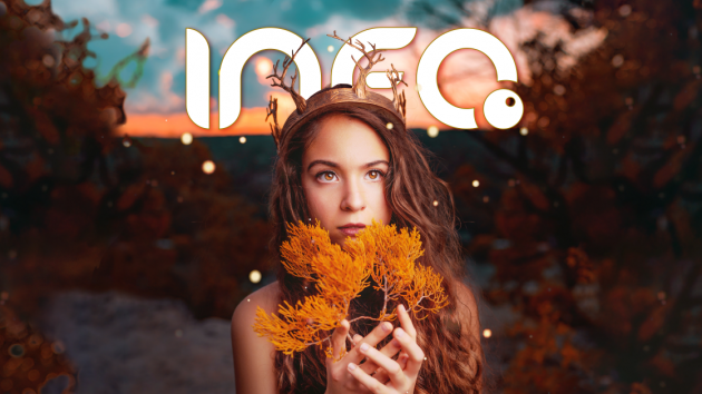 InfoPont Magazin – November