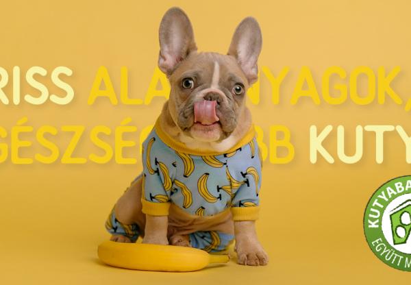 Friss alapanyagok, egészségesebb kutya