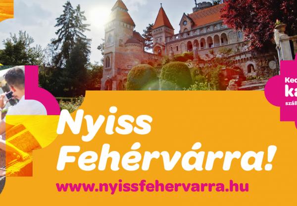 Senki sem marad program nélkül a nyáron Fehérváron!